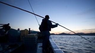 大阪のジギング船(遊漁船)!乗船前のチェックポイント